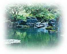 Idealized pond