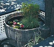A backyard Water Garden Tub made with a rustic looking barrel